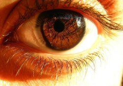 Ваше зрение - проверьте себя