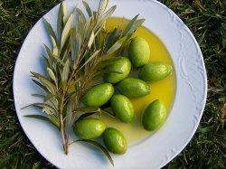 Оливки как залог здоровья